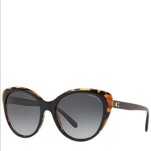 Coach Polarized Sunglasses